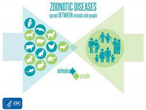zoonotic-diseases